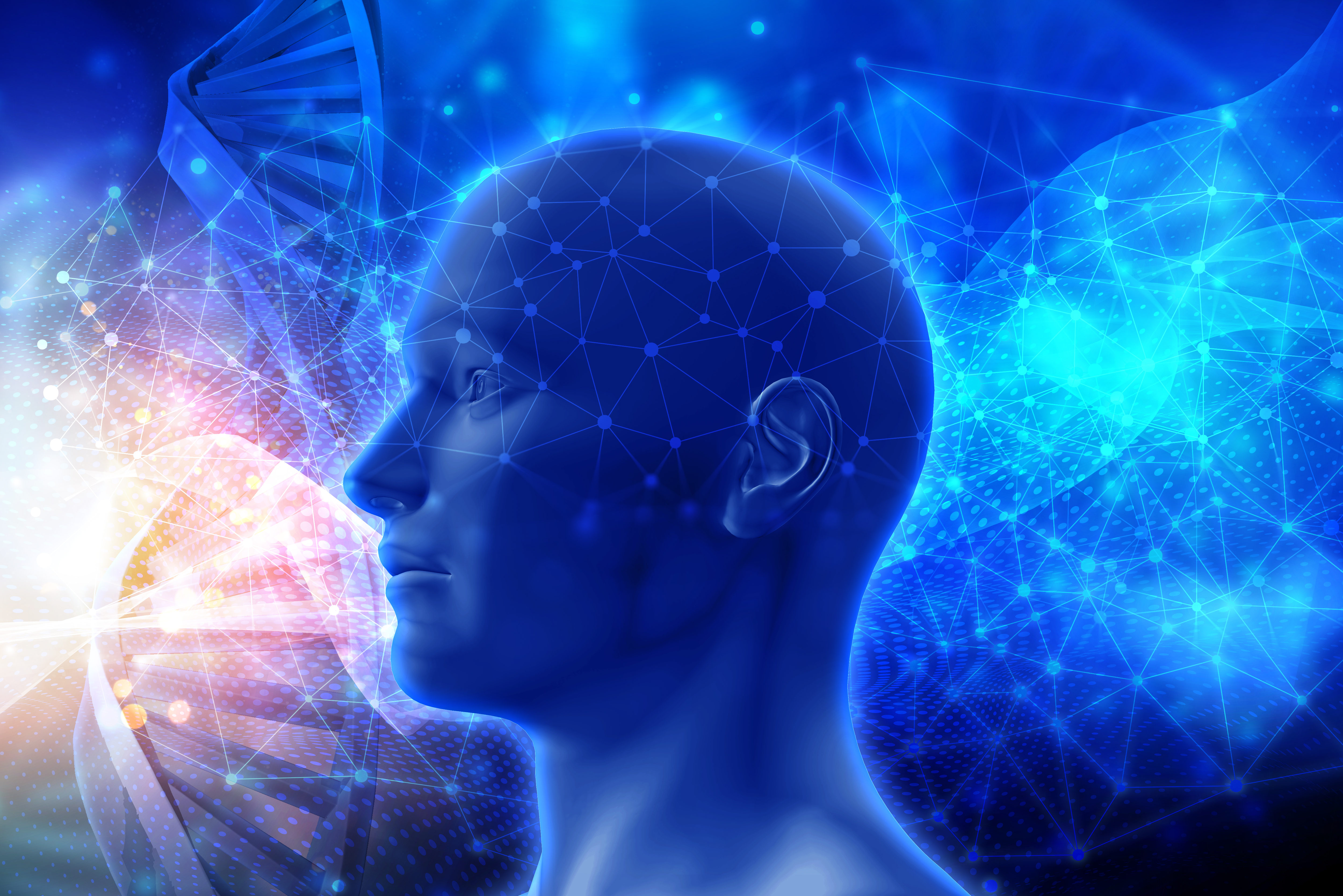 Représentation scientifique d'un humain
